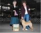 North Country Kennel Club Show, USA, Dog Show, judge Letita Bett